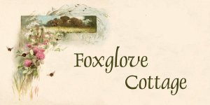 Foxglove Cottage Hand Needles