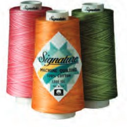 Signature Machine Quilting Thread Variegated 40wt | Signature Article 49